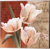 French Tulip Collage II Fine-Art Print