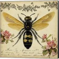 From the Rose Garden I Fine-Art Print