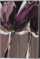 Aubergine Splendor II Fine-Art Print