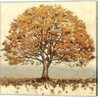 Golden Oak Fine-Art Print