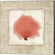 Coral Linen I - Mini Fine-Art Print