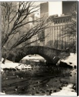 Gapstow Bridge NYC Fine-Art Print