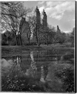 Central Park Reflections Fine-Art Print