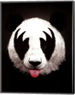 Panda Rocks Fine-Art Print