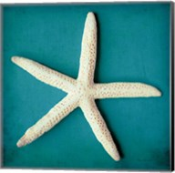 Sea Star II Fine-Art Print