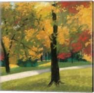Early Autumn Reds Fine-Art Print