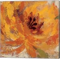 Fiery Dahlias I Fine-Art Print