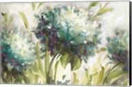 Hydrangea Field Fine-Art Print