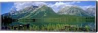 Canoe Leigh Lake, Grand Teton National Park Fine-Art Print