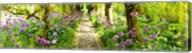 Laburnum trees at Barnsley House Gardens, Gloucestershire, England Fine-Art Print