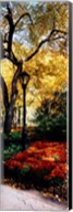 Lamppost in a park, Central Park, Manhattan, New York City, New York, USA Fine-Art Print