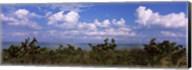 Tampa Bay, Gulf Of Mexico, Anna Maria Island, Florida Fine-Art Print
