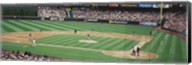 SAFECO basefall Field Seattle WA Fine-Art Print