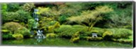 Waterfall in a garden, Japanese Garden, Washington Park, Portland, Oregon, USA Fine-Art Print