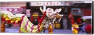 Group of people performing dragon dancing on a road, Chinatown, San Francisco, California, USA Fine-Art Print
