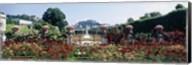 Flowers in a formal garden, Mirabell Gardens, Salzburg, Salzkammergut, Austria Fine-Art Print