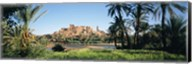 Palm trees with a fortress in the background, Tiffoultoute, Ouarzazate, Marrakesh, Morocco Fine-Art Print