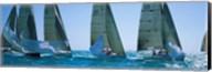 Sailboats, Key West, Florida Fine-Art Print