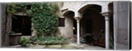 Ivy on the wall of a house, Girona, Spain Fine-Art Print
