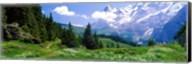 Alpine Scene Near Murren Switzerland Fine-Art Print