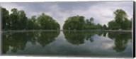 Reflection of trees in a pond, Versailles, Paris, Ile-De-France, France Fine-Art Print
