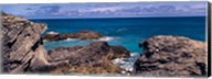 Rock formations on the coast, Bermuda Fine-Art Print