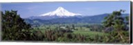 Trees and farms with a snowcapped mountain in the background, Mt Hood, Oregon, USA Fine-Art Print