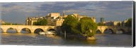 Arch bridge over a river, Pont Neuf, Seine River, Isle de la Cite, Paris, Ile-de-France, France Fine-Art Print
