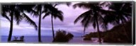 Palm trees on the coast, Colombia (purple sky with clouds) Fine-Art Print