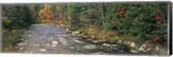 River flowing through a forest, Ellis River, White Mountains, New Hampshire, USA Fine-Art Print