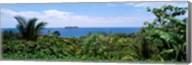 Manuel Antonia National Park nr Quepos Costa Rica Fine-Art Print