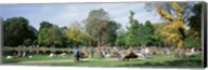 People Relaxing In The Park, Vondel Park, Amsterdam, Netherlands Fine-Art Print
