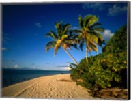 Palm trees and beach, Tahiti French Polynesia Fine-Art Print