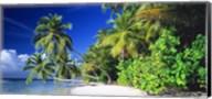 Palm Beach The Maldives Fine-Art Print