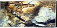 Rock Wasatch National Forest UT USA Fine-Art Print