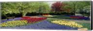 Keukenhof Gardens, Lisse, Netherlands Fine-Art Print