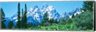 Snow covered peaks, Grand Teton National Park WY Fine-Art Print