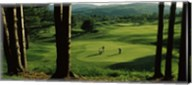 Four people playing golf, Country Club Of Vermont, Waterbury, Washington County, Vermont, USA Fine-Art Print