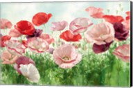 Poppies Pleasure Fine-Art Print