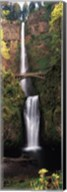 Waterfall in a forest, Multnomah Falls, Columbia River Gorge, Multnomah County, Oregon, USA Fine-Art Print