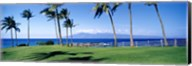 Palm trees at the coast, Ritz Carlton Hotel, Kapalua, Molokai, Maui, Hawaii, USA Fine-Art Print
