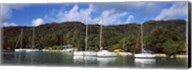Yachts anchored at the harbor on La Digue Island, Seychelles Fine-Art Print