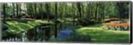 Flower beds and trees in Keukenhof Gardens, Lisse, Netherlands Fine-Art Print