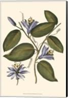Lavender Floral III Fine-Art Print