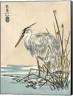 Oriental Crane I Fine-Art Print
