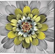 Fractal Blooms IV Fine-Art Print