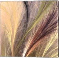 Fountain Grass I Fine-Art Print