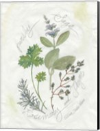 Parsley & Sage Fine-Art Print