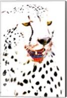Close-up of a Cheetah Fine-Art Print