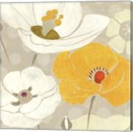Sunshine Poppies I Square Fine-Art Print